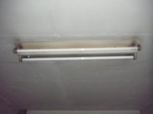 RIMG0192