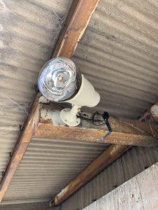 名古屋市港区の倉庫にて投光器の取替電気工事